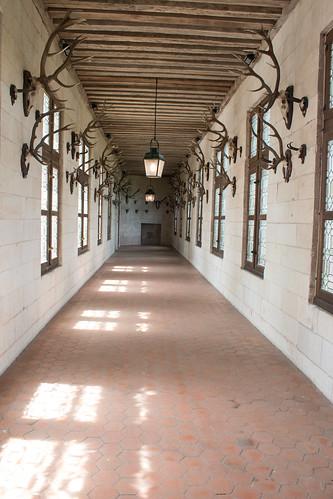 La salle des trophées, Château de Chambord