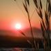 Sunset Time @Kos (Tassos Gi.) Tags: kos sunset greece