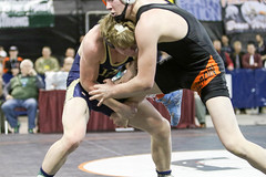 591A7854.jpg (mikehumphrey2006) Tags: 2017statewrestlingnoahpolsonsports state wrestling coach sports action pin montana polson