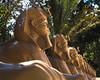 (Matheus.Fernando) Tags: egypt amorc rosa cruz museu curitiba cwb nice cool group misticismo esotérica filosofia