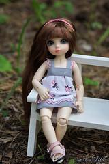 (likabalu) Tags: fairyland pipi littlefee