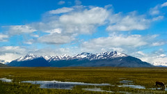 Landscapes from Patagonia