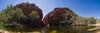 Ellery Creek (Guille Barbat) Tags: nature australia panoramic northernterritory ladscapes ellerycreek westmacdonnellnationalpark guillebarbat
