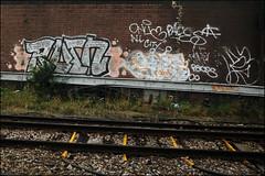 Rotn / Paces (Alex Ellison) Tags: urban graffiti tn boobs railway kc graff southlondon trackside paces fdc roten rotn dfn