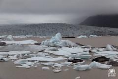 Fjallsrln Glacier Lagoon (andrea.prave) Tags: lake cold ice nature lago island see iceland islandia cool lac natura lagoon glacier iceberg laguna gletscher eis  glaciar hielo glace islande  ghiaccio innsj sj ghiacciaio  islanda gl    s        jkullinn    fjallsrln  eli   toppurinn