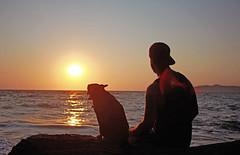 Sunset in Monte Argentario, Italy (m.mirko82) Tags: sunset sea summer vacation italy dog pets cane italia tramonto mare friendship tuscany toscana bestfriend argentario monteargentario seasunset