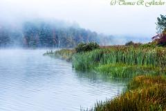 Autumn Mist on Lake (travelphotographer2003) Tags: morning autumn summer mist fall misty fog solitude foggy tranquility westvirginia serenity freshness refreshment appalachianmountains purity tranquilscene cowen outdoorrecreation alleghenymountains beautyinnature webstercounty bigditchlake