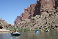 Grand Canyon 2015 620