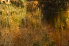 Lac des 7 fontaines-5 (Lucie van Dongen) Tags: autumn lake colors landscapes pond scenic autumncolors