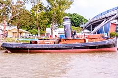 20151129-035-Brisbane River Bat Cruise.jpg (Brian Dean) Tags: cruise river au bat australia brisbane queensland brisbaneriver