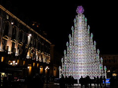 Thousand and thousand lights (alessiochiolo) Tags: life christmas city trees winter sky people italy white cold tree castle art night dark square torino happy lights design big cool artwork colours geometry air arc pic structure piemonte tall piazza natale castello regione smarthphone