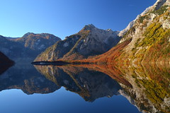 Perfect reflection (echumachenco) Tags: november blue autumn trees red sky lake mountains alps reflection green fall water colors yellow forest germany bayern deutschland bavaria outdoor königssee watzmann stbartholomä berchtesgadenerland nationalparkberchtesgaden berchtesgadeneralpen nikond3100 hachelwand