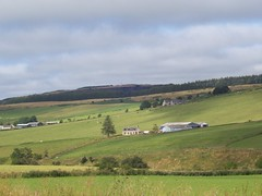 Milltown of Auchindoun, Sep 2015 (allanmaciver) Tags: trees green work aberdeenshire shades farmland sep pastoral morayshire milltown auchindoun allanmaciver