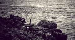 DSC_6960 (Mark Hobbs@Chepstow) Tags: ship portishead avonmouth severnbridge royalportbury