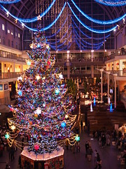 PC200241 (mina_371001) Tags: christmas beautiful japan sapporo hokkaido shoppingmall   merrychristmas xmastree  whiteillumination sapporofactory photographywork olympusomdem10