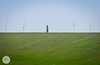 Sunken City (ESTjustPHOTO - Elias S Tilavgi) Tags: sunken city larnaca cyprus landscape green scenery outdoor field grassland stadium lights