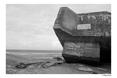 (Tiffanie Poiret) Tags: canoneos60d playa plage mer sea black white bird dead war peace rock