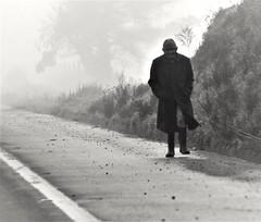 Carretera Temuco-Santiago, Araucanía, Chile (Mario Rivera Cayupi) Tags: carretera araucanía chile personas people highway poverty streetphotography fotografíadecalle fotografíacallejera streetphotographyinchile