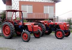 Same Minitauro 60 & Minitauro 50 (samestorici) Tags: oldtimertraktor tractorvintage tracteurantique trattoristorici oldtractor