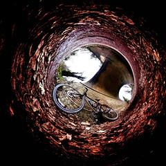 bicycle tunnel (»alex«) Tags: bike bicycle cyclocross kentdowns northdowns barhamdowns ricohtheta elhamvalley railway bridge kingston planet tunnel