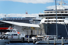 20170115-03-Golden Princess and The World cruise ships in Hobart (Roger T Wong) Tags: 2017 australia gildenprincess hobart rogertwong sel70300g sony70300 sonya7ii sonyalpha7ii sonyfe70300mmf2556goss sonyilce7m2 tasmania theworld boats cruiseships