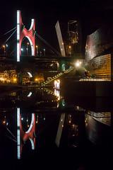 Reflejos en el estanque del Guggenheim (dnieper) Tags: puentedelasalve museoguggenheim estanque reflejos bilbao ríadebilbao ríonervión