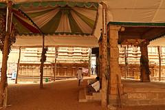 Trichy Ranganathaswamy Temple 129 (David OMalley) Tags: india indian tamil nadu subcontinent trichy sri ranganathaswamy temple srirangam thiruvarangam gopuram chola empire dynasty rajendra hindu hinduism unesco world heritage site ranganatha vishnu canon g7x mark ii canong7xmarkii