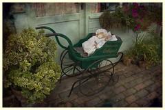 Meadowview Antiques (Audrey A Jackson) Tags: canon60d middletonhall staffordshire antiques history pram cobblestones door window windowbox flowers dolls plantpots shrubs colour