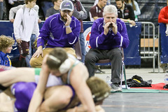 591A7823.jpg (mikehumphrey2006) Tags: 2017statewrestlingnoahpolsonsports state wrestling coach sports action pin montana polson