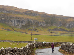 Littondale:-limestone-cliffs-and-scree. For sale (wombalano) Tags: yorkshiredales littondale limestonecliffs wombalano