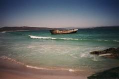strandloper01 (fjordaan) Tags: southafrica 1999 scanned sa langebaan weskus strandloper