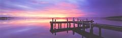 Squid's Ink (rubberducky_me) Tags: sunset panorama lake reflection film water newcastle belmont jetty australia velvia nsw fujifilm linhof lakemacquarie linhoftechnorama squidsink linhoftechnorama617iiis