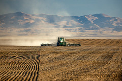 Lonely Work (www.toddklassy.com) Tags: tractor dusty face field horizontal work landscape outdoors photography montana driving mt flat action farm wheat farming grain working tracks documentary front farmland hills equipment soil dirt rows farmer organic prairie agriculture dust chinook planter eastern planting agricultural johndeere drilling farmmachinery plantpropagation greatplains cultivated sowing cultivate implement seeddrill seeding airdrill grower cerealcrop colorimage seeder sown blainecounty bearpawmountains intocamera hinebauch