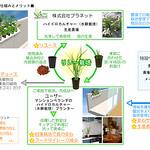 マンションベランダと農場との水耕野菜のリレー栽培ネットワークの写真