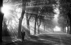 Djurgården, Stockholm, October 15, 2015 (Ulf Bodin) Tags: street autumn blackandwhite panorama sun mist man monochrome fog canon photography eos se is ray sweden stockholm outdoor walk streetphotography sverige rays stm m3 höst sunray djurgården dimma 55200mm efm stockholmslän f4563 canoneosm3 canonefm55200mmf4563isstm