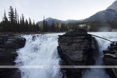 Athabasca Falls, Jasper National Park, Canada (Naomi Rahim (thanks for 2 million hits)) Tags: morning travel autumn trees mist canada mountains cold fall nature water forest landscape waterfall cool nikon jasper wanderlust alberta rockymountains rugged athabascariver jaspernationalpark athabascafalls athabasca icefieldsparkway canadianrockies travelphotography nikond7000