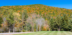 Fall Color in Catskill Mountain (gourab66) Tags: travel newyork landscape nikon fallcolor catskill nikond810 nikon1635mmf4vr