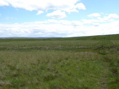Looking back at Hartleyburn Common (North)