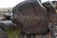 30095316 (wolfgangkaehler) Tags: old animals rock asian ancient asia desert deer mongolia anima centralasia petroglyph gobi blackmountains petroglyphs mongolian gobidesert southernmongolia