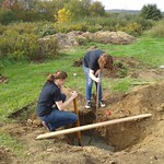 Students work together to dig a hole outside.
