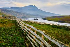 Loch Fada (johan wieland) Tags: old lake man tree island scotland isleofskye loch engeland schotland oldmanofstorr storr snp