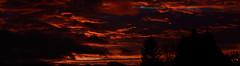 Photo of Dawn