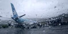The rainy Tahiti airport (sapphire_rouge) Tags: tahiti resort polynesia airplane airport  rangiroa franchpolynesia    atool polynsiefranaise  island kiaora lagoon