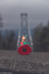 Lest We Forget. #RemembranceDay (Sonika Arora 604) Tags: street bridge trees red sky cloud canada mountains green cars love nature colors beautiful architecture vancouver concrete outdoors grey freedom fight nikon war remember peace bc natural bokeh streetlights britishcolumbia peaceful overcast naturallight poppy soldiers stanleypark lionsgatebridge remembranceday fighters lionsgate bravery veterans veteransday vancity naturephotography beautifulbc nikonphotographer nikonphotography nikonphotographers
