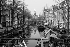 The Old Police Station : Bloemgracht Reflection B&W (l3v1k) Tags: bridge light bw copyright flower macro reflection beautiful station amsterdam bicycle yellow 50mm canal spring nikon greg hand natural police naturallight steeple sharp petal stamen tulip nikkor f18 amsterdamsebos bloemgracht d600 afd stoma 500px f18afd ifttt kirkpqtrick copyrightgregkirkpqtrick