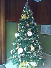 albero di natale condominiale a roma - viale libia (ERREGI 1958) Tags: albero natale tree roma rome italia italy lazio christmas condominio androne