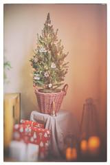 Fröhliche Weihnachten! Merry Christmas! (Gret B.) Tags: weihnachten fröhlicheweihnachten winter feiertage christmas merrychristmas tannenbaum weihnachtsbaum