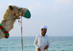 Arab bedouin man with his camel (Ferdousi.) Tags: beach uae ajman camel bedouin camelride travelphotography traveling candid stranger arabculture