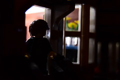 Nightlife (AyliffeMakit) Tags: lego legos minifigure minifigures minifig minifigs minifigscale minifigurescale modular photo photos photograph photography lighting lights minimalistic silhouette night dark city cityscape mysterious mystery intrigue moc sigfig house pet shop building buildings