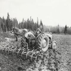 Gösta på traktor 1950-talet (Michael Erhardsson) Tags: pappa far gösta traktor 1950talet jordbruk historia